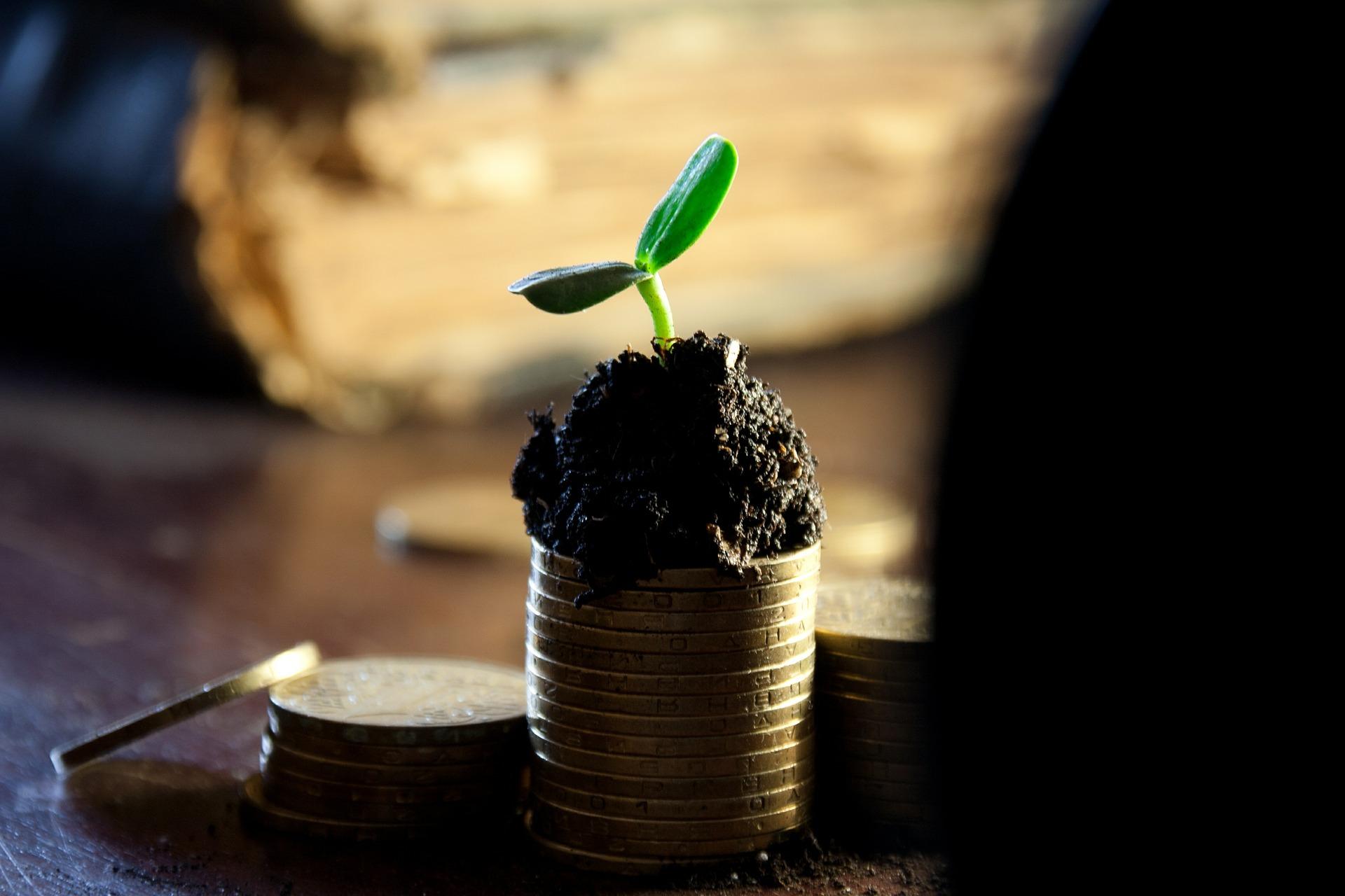úspora a životní prostředí